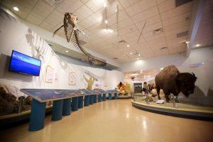 Swift Current Museum